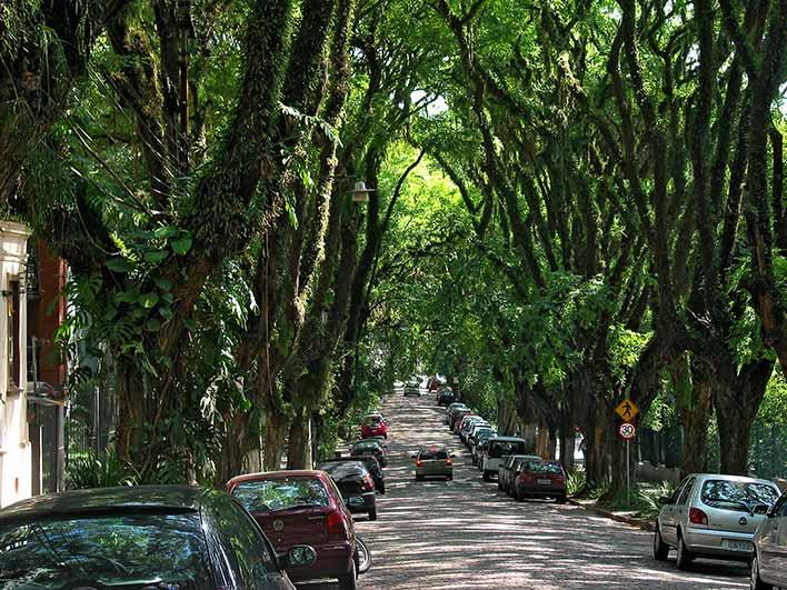 - Vizinhança: Ruas - Goncalo-de-carvalho00009