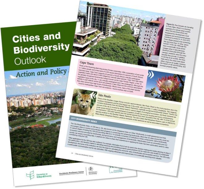 Na página 24 da publicação Cities and Bioversity Outlook, o exemplo das árvores e dos que lutaram por sua preservação. Devem ficar muito surpresos ao tomarem conhecimento do ocorrido neste ano com as árvores de Porto Alegre, especialmente no dia 29 de maio de 2013.