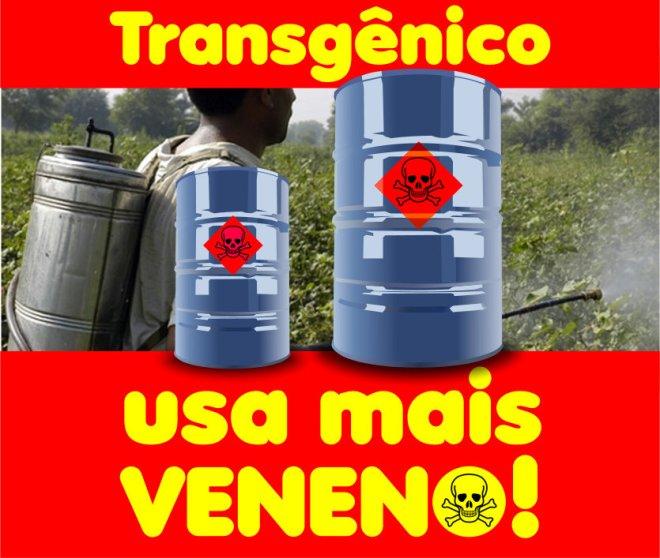 Brasileiro é quem mais consome venenos nos alimentos.