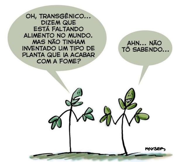 Os trnsgênicos e a fome no mundo - Charge do Kayser